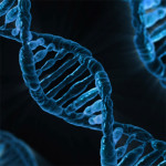 New Epigenetic Research Helps Explain How We Pass Down Both Our Genes and Our Experiences