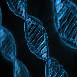 EFT and DNA