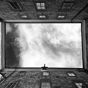 trauma window